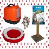Kedi Tuvalet Seti Ve İhtiyaçları 4lü Paket+hediyel...