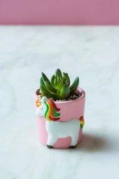 Unicorn Yeşil Sukulent Vazo