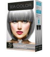 Sea Color Saç Boyası 0.01 Füme Gri Silver