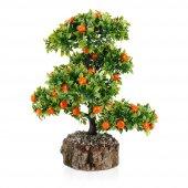 Kütük Saksıda Yapay Mandalina Ağacı
